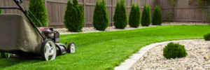 Lawn mower performing lawn care services - idaho falls landscaping maintenance