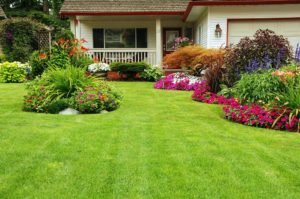 Well Kept Yard With Attractive Landscape Design